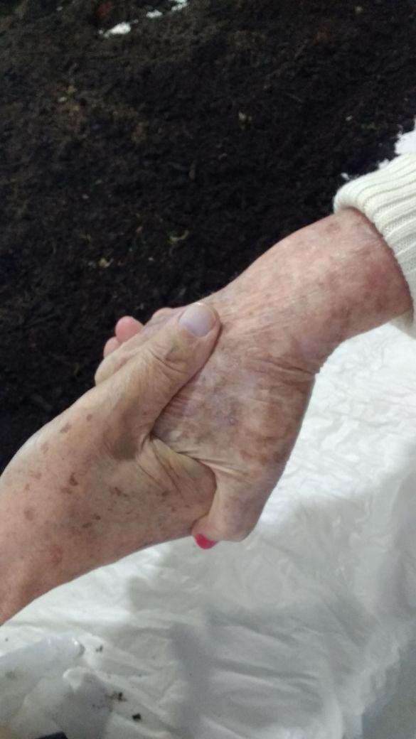 aperto de mãos entre idosos em horta suspensa
